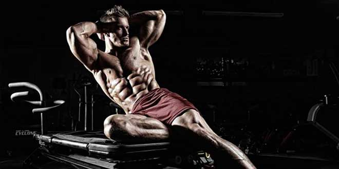 Fat loss and muscle definition