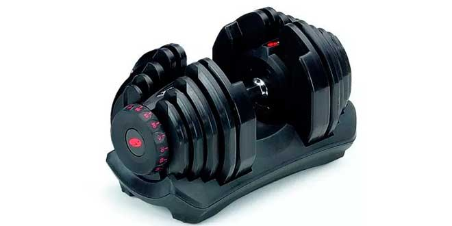 Dumbbell with several weights