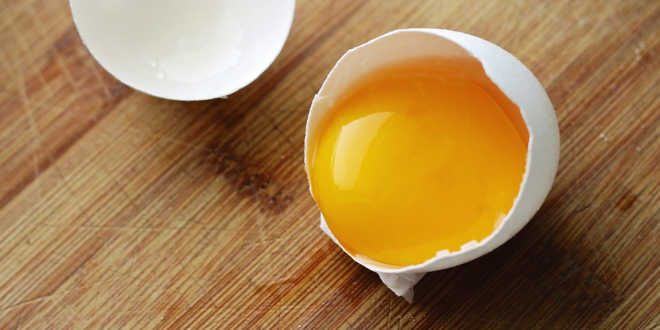Egg yolk for ocular health
