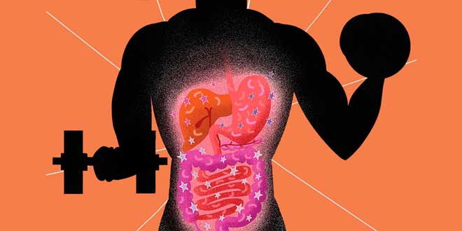 Athletes and the Intestinal Flora