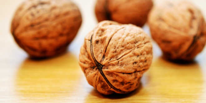 Walnuts source of vitamin E