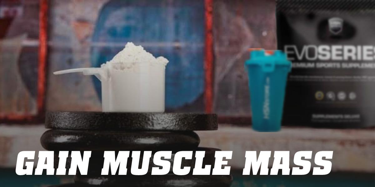 Gain Weight/Muscle Mass